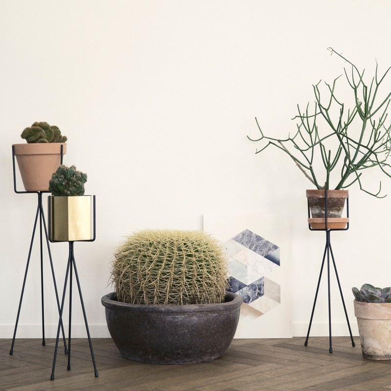 Plant stands, £32